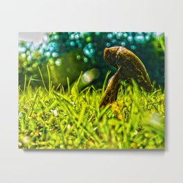 The poisonous fungus Metal Print