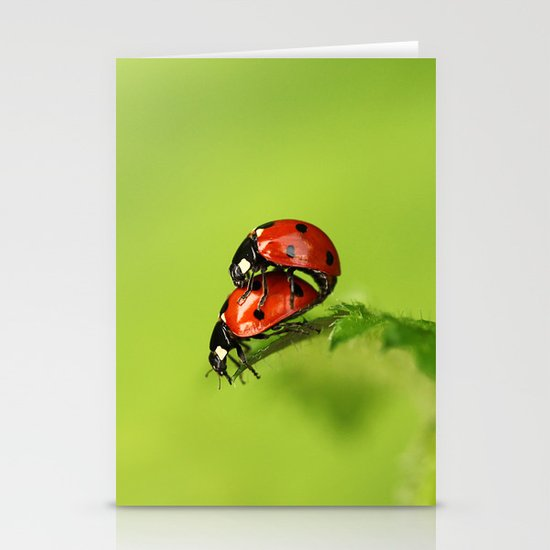 Ladybirds in spring Stationery Cards