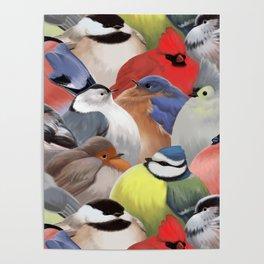 Fat backyard birds Poster