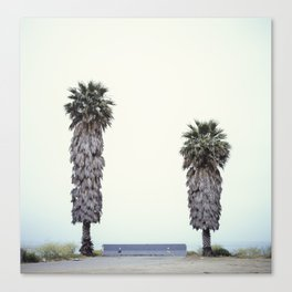 Two Palms Canvas Print