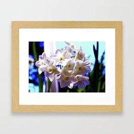 Paperwhite Narcissus Framed Art Print