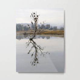 Trees and birds reflected in lake - Portrait Metal Print