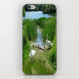 Bosherston Lily Ponds.Pembrokeshire.Wales. iPhone Skin