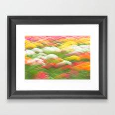 Tulip Field Abstract - Holland Michigan Framed Art Print