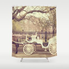 New Orleans Carriage Ride Shower Curtain