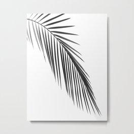 Palm leaf B&W Metal Print