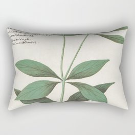 Silk plant Asclepias syriaca (1596-1610) by Anselmus Botius de Boodt Rectangular Pillow