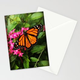 Buttefly Surprise Stationery Cards