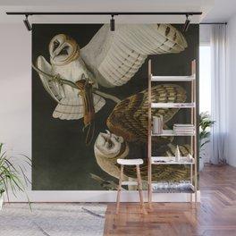 Barn Owl - Vintage Bird Illustration Wall Mural