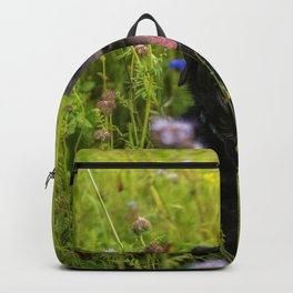 Labrador Meadow Dog Domestic Backpack