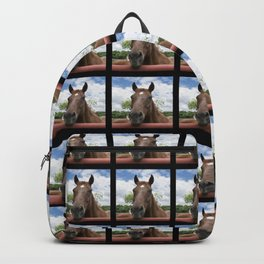 Closeup photo of brown horse looking over fence Backpack