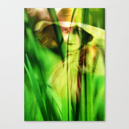 Voyeur Canvas Print