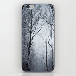 White branches (II) iPhone Skin