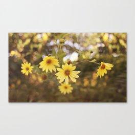 Five Flowers Canvas Print
