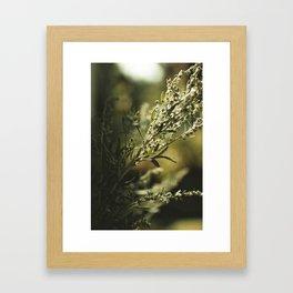 Wormwood Framed Art Print