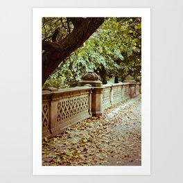 Park Art Print