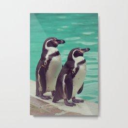 Penguin Birds Metal Print