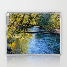 Autumn collection 3 Laptop & iPad Skin
