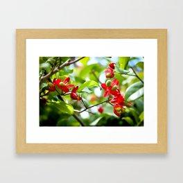 Rosy Red Flowers Framed Art Print