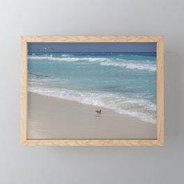 Carribean sea 8 Framed Mini Art Print