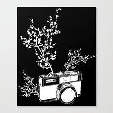 Minolta Canvas Print