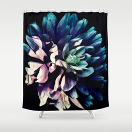 Pink Dahlia In the Last Rays of Sunset Shower Curtain