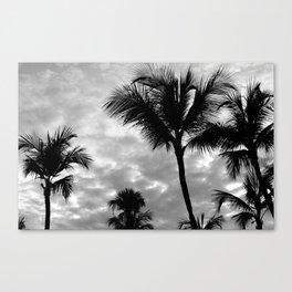 Photo 53 Palm Trees Canvas Print