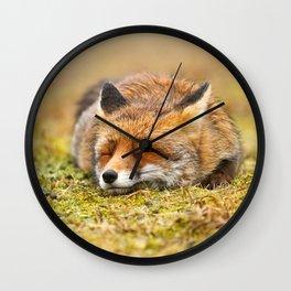 Comfortably Fox (red fox sleeping) Wall Clock