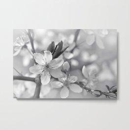 Spring 0119 Metal Print