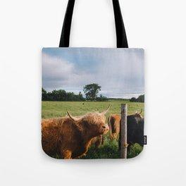 Highland Cows III Tote Bag