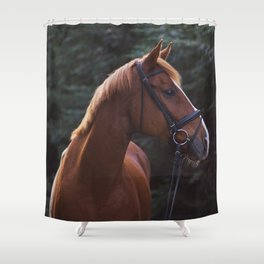 henry.  Shower Curtain
