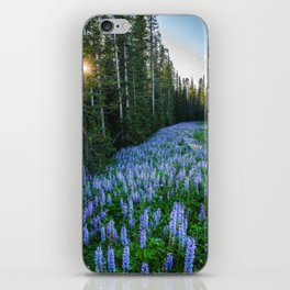 High Country Lupine - Purple Wildflowers in Montana Mountains iPhone Skin