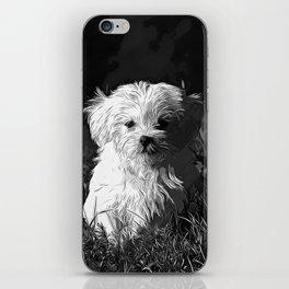maltese dog vector art black white iPhone Skin