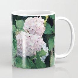 Hydrangeas in the Yard Coffee Mug