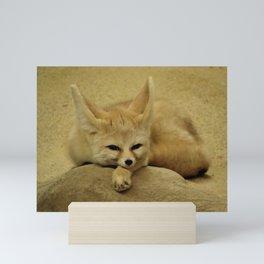 Sleepy Sand Cat Mini Art Print