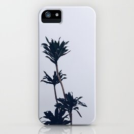 Dracaena Plant iPhone Case
