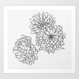 Ink Illustration of Summer Blooms Art Print