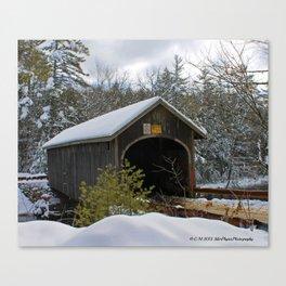 Winter Safety Canvas Print