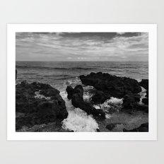 coral cove Art Print