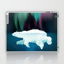 Polar Ice Laptop & iPad Skin