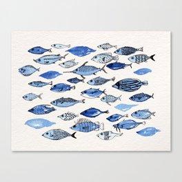 Aquarium blue fishes Canvas Print