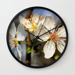 Flowering Plum Wall Clock