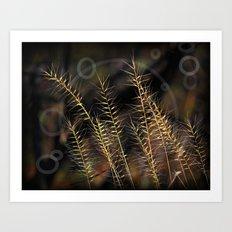 Grass Of Circles Art Print