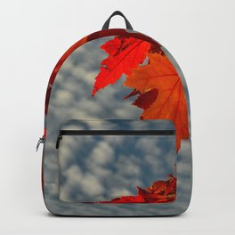 Evening Sky in The Fall by Teresa Thompson Backpack