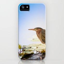 Crowned Night-Heron- Hammond pond iPhone Case