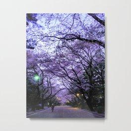 Sakura Walk Metal Print