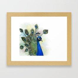 Digital painting Portrait of Peacock Framed Art Print