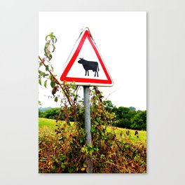 Cow Crossing Canvas Print