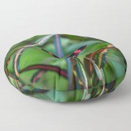 Uvita Butterfly Garden Floor Pillow