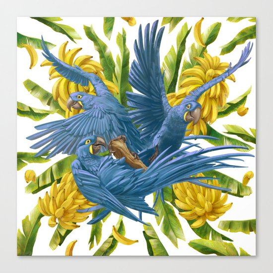 Hyacinth macaws and bananas Stravaganza. Canvas Print